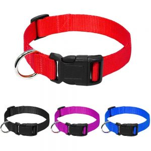 Basic Pet Collar