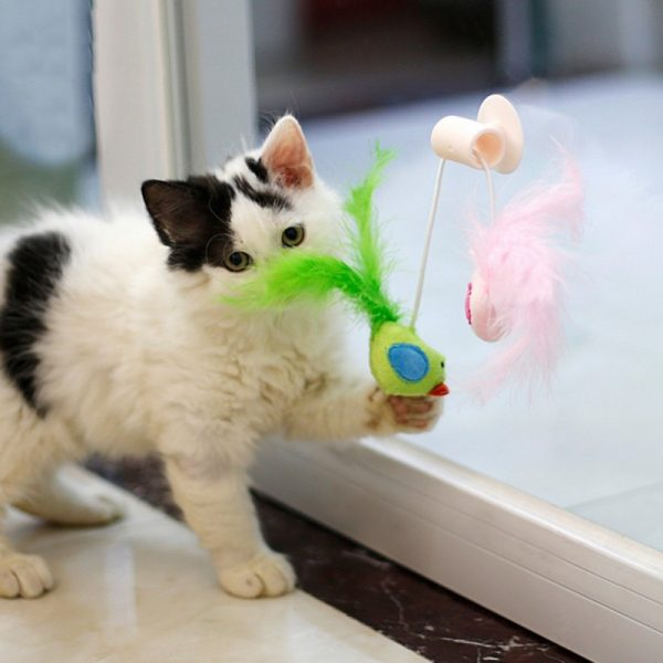 Funny-Feather-Toys