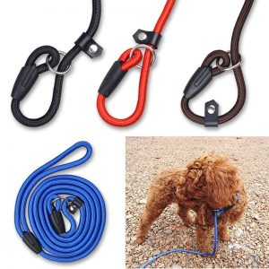 Pet-Dog-Leash