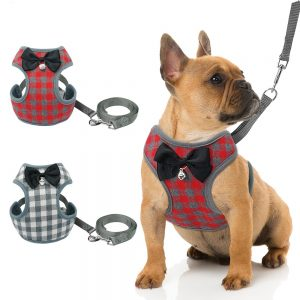 Plaid Harness And Leash