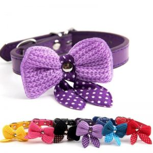 Bright-Bowtie-Collar