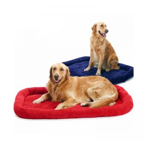 Dog-Bench-Bed Style