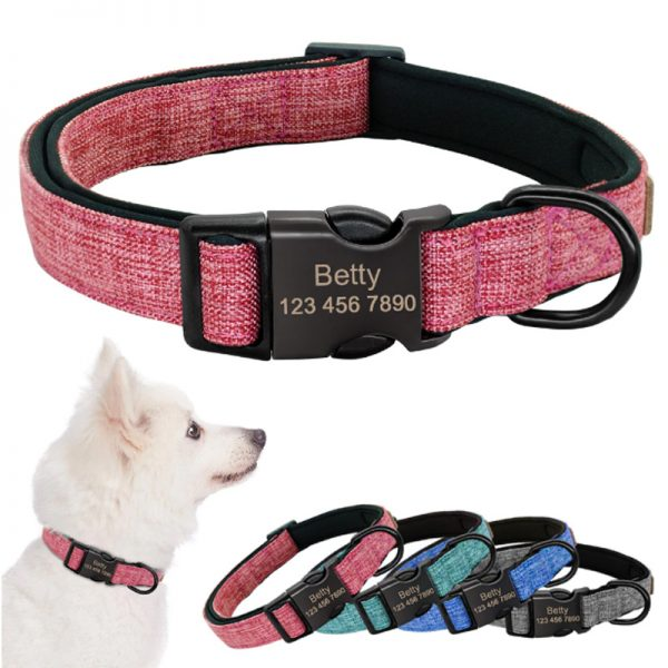 Personalised-Collar
